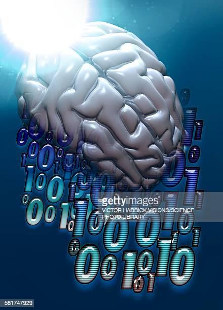 binary code and human brain, illustration - victor habbick stock illustrations
