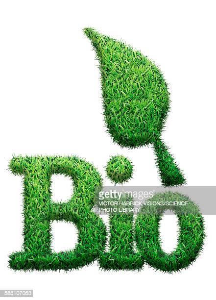 ilustraciones, imágenes clip art, dibujos animados e iconos de stock de bio made from grass, illustration - biodiversidad