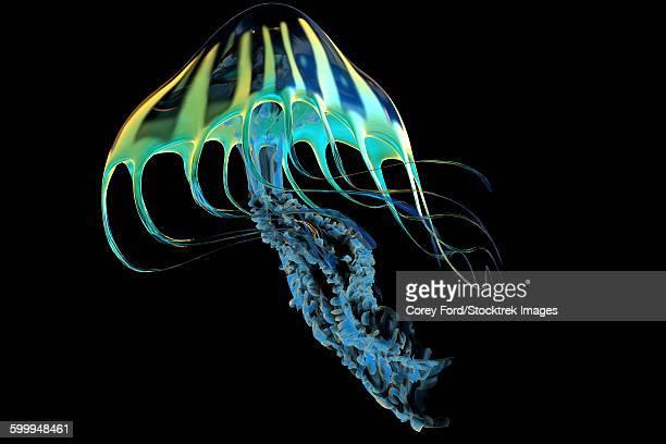 A bioluminescent Jellyfish.