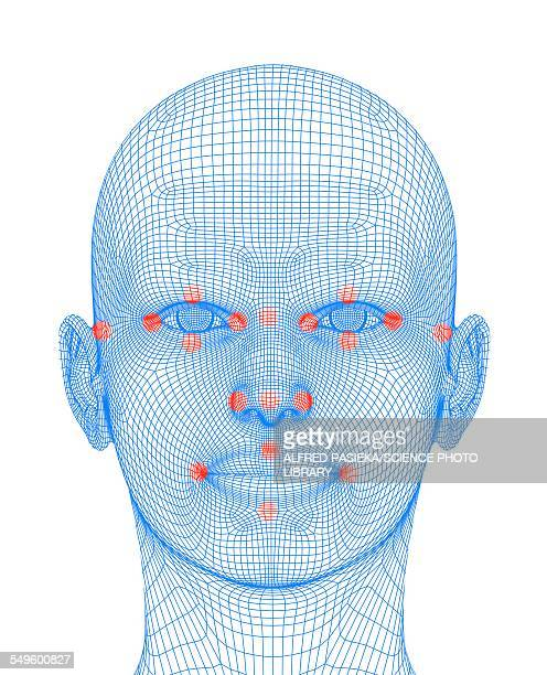 Biometric facial map