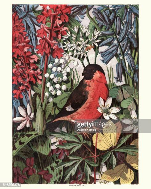 bird amoung wildflowers, 1869 - lithograph stock illustrations