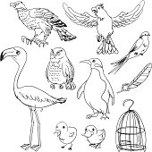 Bird collection in black and white