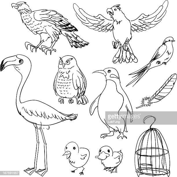 bird collection in black and white - eagle bird stock illustrations, clip art, cartoons, & icons