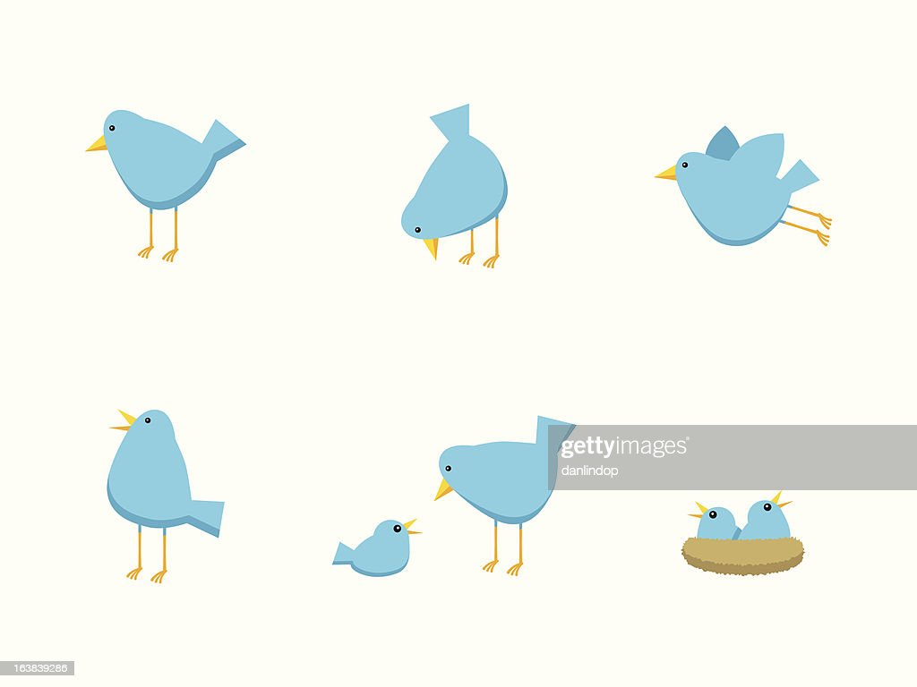 Bird Family Icons