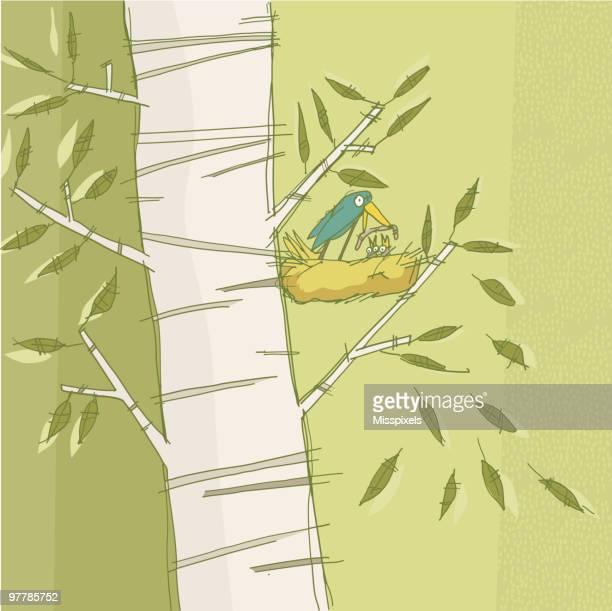 bird feeding - tree bark stock illustrations, clip art, cartoons, & icons