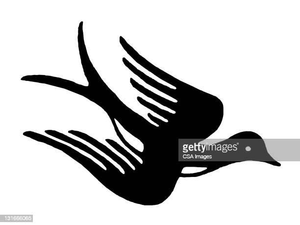 illustrations, cliparts, dessins animés et icônes de bird - hirondelle