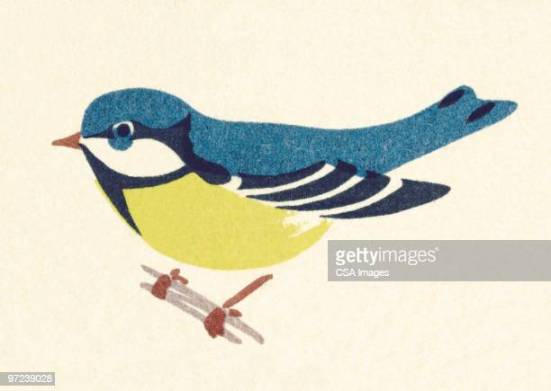 bird - branch stock illustrations