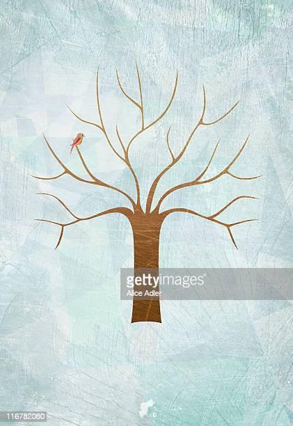 illustrations, cliparts, dessins animés et icônes de a bird in a tree with no leaves - arbre sans feuillage