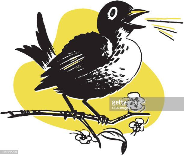 bird on a branch - animal call stock illustrations