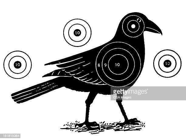 bird with shooting targets - sports target stock illustrations