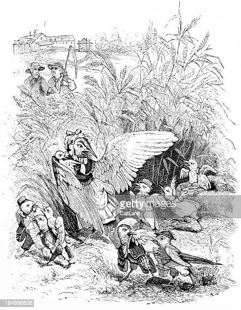 birds fleeing corn field - victorian steel engraving - zea stock illustrations, clip art, cartoons, & icons