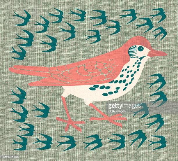illustrations, cliparts, dessins animés et icônes de des oiseaux - un seul animal
