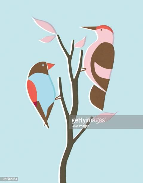birds - branch stock illustrations