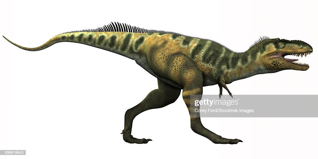 Bistahieversor is a genus of tyrannosauroid dinosaur that lived in New Mexico during the Cretaceous Period. : stock illustration