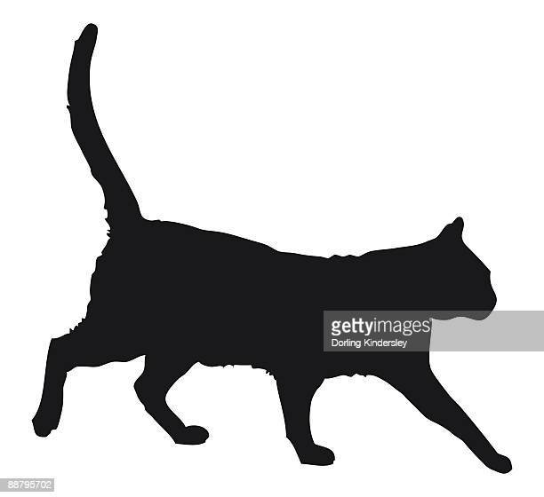 50 猫 歩く 横 Stock Illustrations Clip Art Cartoons Icons