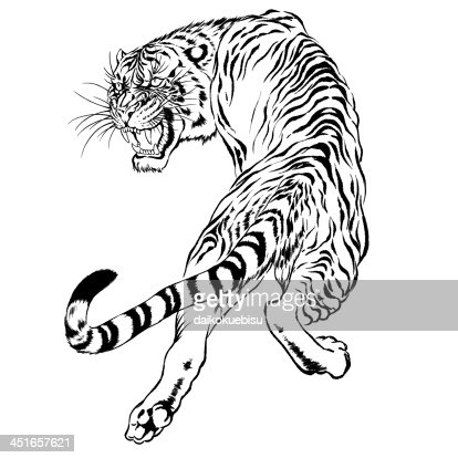Black And White Drawing Of A Japanese Tiger Stock