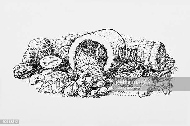 Black and white illustration of almonds, walnuts, and Brazil nuts surrounding nutcracker