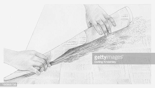 illustrations, cliparts, dessins animés et icônes de black and white illustration of hands wrapping a bunch of dried flowers in newspaper (storing dried flowers) - bouquet de fleurs