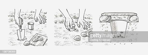 black and white illustration of how to make an insect trap, by digging a hole, putting a cup in it, and forming a trap with wood and stones - black studio点のイラスト素材/クリップアート素材/マンガ素材/アイコン素材