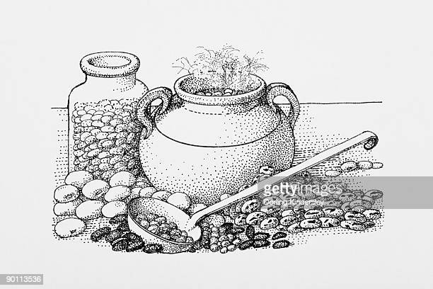 black and white illustration of stew pot surrounded by beans - broad bean stock illustrations, clip art, cartoons, & icons