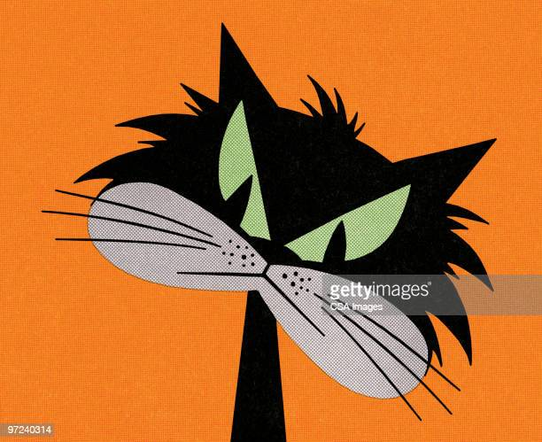 illustrations, cliparts, dessins animés et icônes de black cat - chat noir