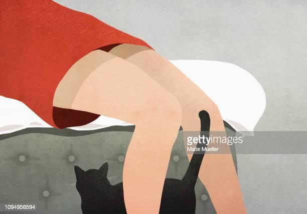 Black cat rubbing against womans legs