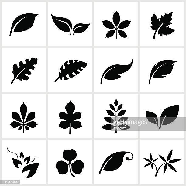 Schwarze Blatt-Symbole