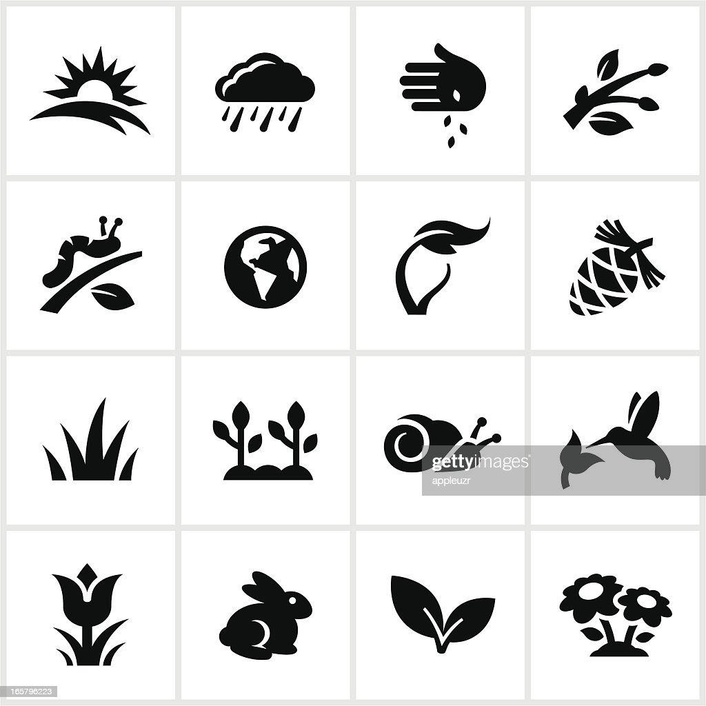Black Springtime Icons