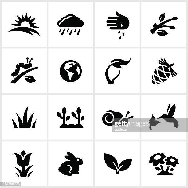 Black Springtime Icons