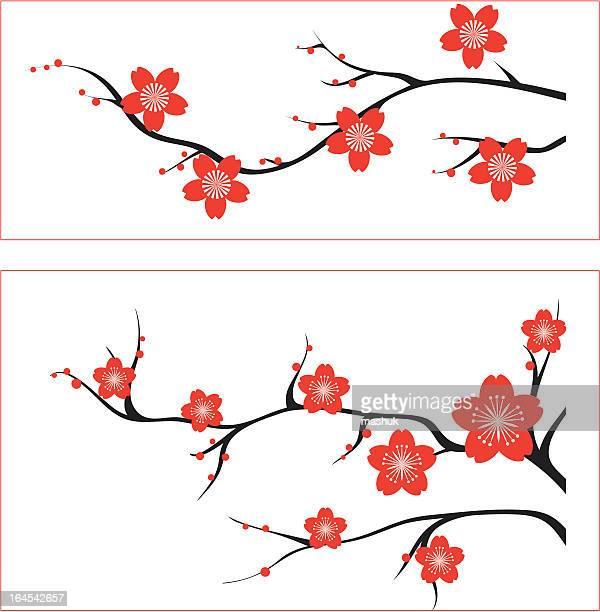 blossom - cherry blossom stock illustrations, clip art, cartoons, & icons