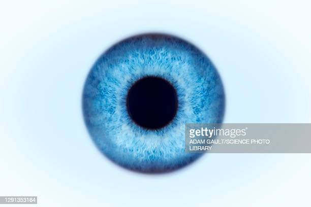 blue eye, illustration - close up stock illustrations