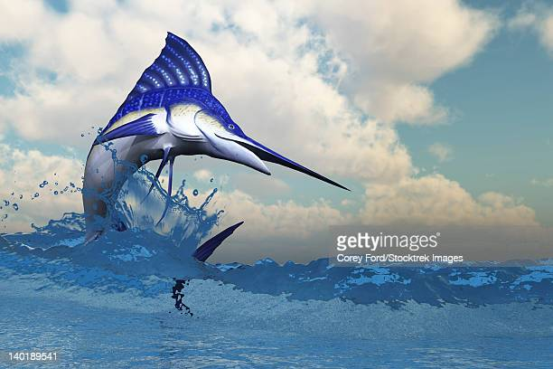 a blue marlin shows off his beautiful colors when bursting from the ocean. - sailfish stock illustrations