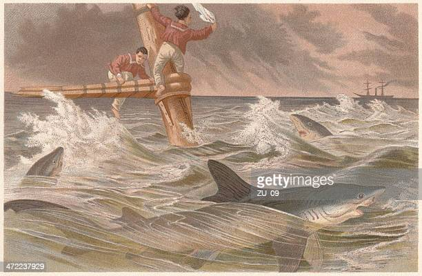 Blue sharks (Prionace glauca) and sailors in danger, lithograph, 1884