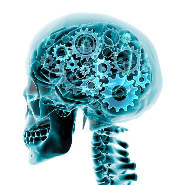 Blue X-ray Of The Brain And Skull With Gears Turning Inside Wall Art
