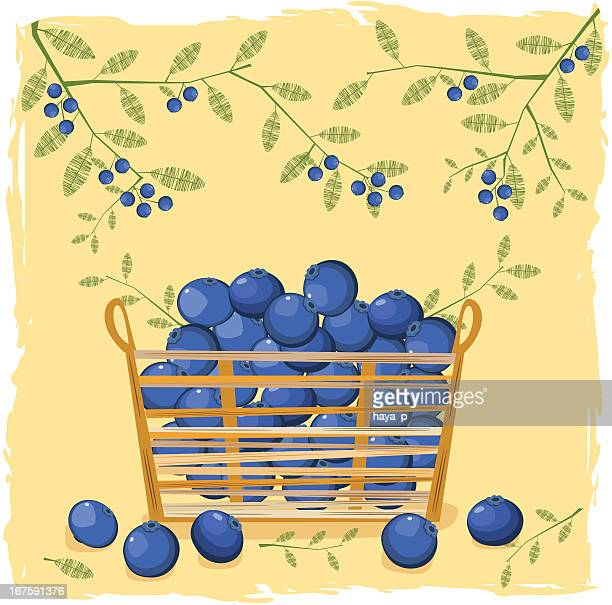 blueberries in small straw basket - blueberry stock illustrations, clip art, cartoons, & icons