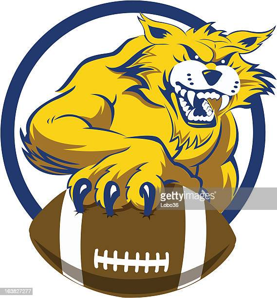 bobcat with football - wildcat animal stock illustrations, clip art, cartoons, & icons