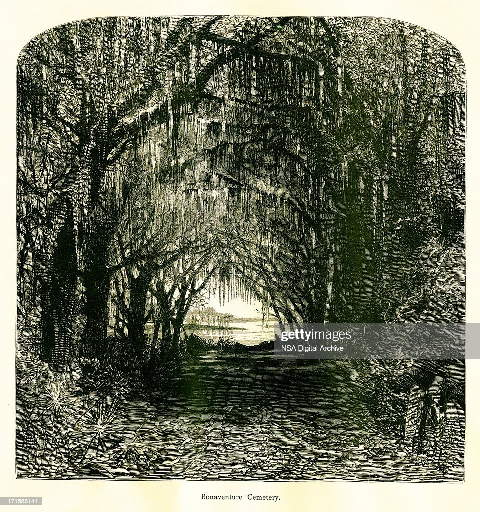Bonaventure Cemetery, Georgia, USA : stock illustration