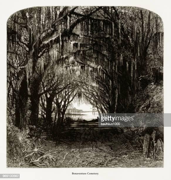 bonaventure cemetery, savannah, georgia, united states, american victorian engraving, 1872 - savannah georgia stock illustrations, clip art, cartoons, & icons