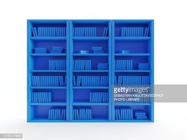 stockillustraties, clipart, cartoons en iconen met book shelf, illustration - boekenplank