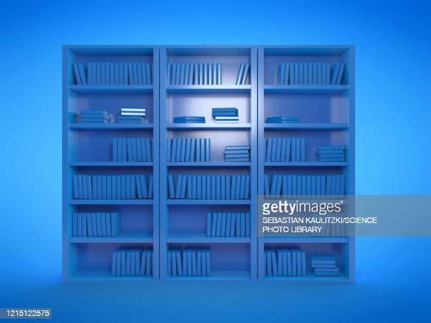 book shelves, illustration - digitally generated image stock illustrations
