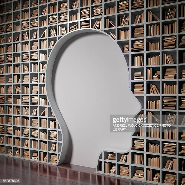 bookshelf with the shape of human head - opportunity stock illustrations