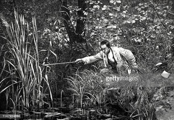 botanists at work in garden - landscaper professional stock illustrations, clip art, cartoons, & icons