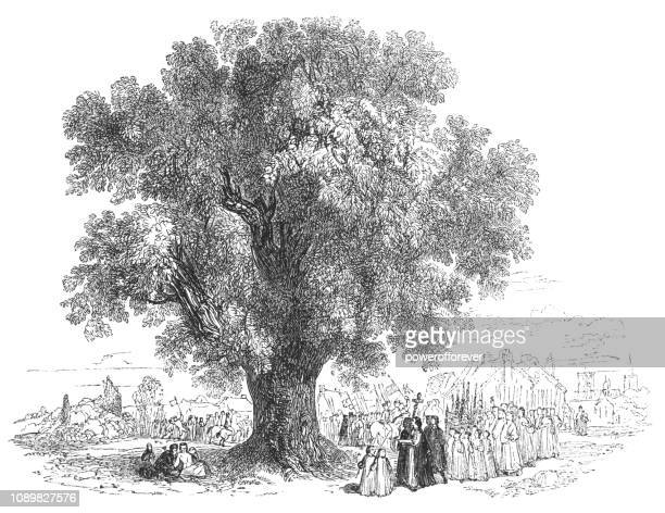 Boundary Tree in Stratford-upon-Avon, England