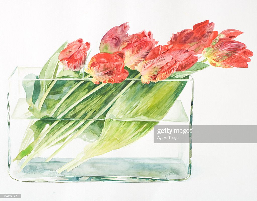 A bouquet of tulips in a rectangular vase stock illustration a bouquet of tulips in a rectangular vase stock illustration floridaeventfo Gallery