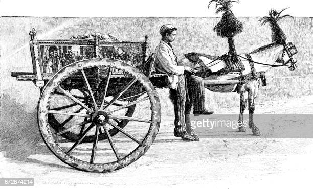boy on a sicilian horse-drawn carriage, richly decorated - sicily stock illustrations, clip art, cartoons, & icons