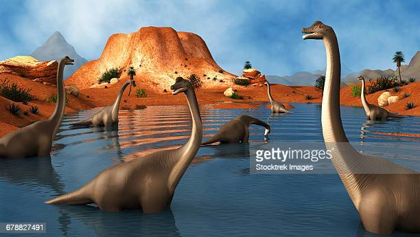 ilustraciones, imágenes clip art, dibujos animados e iconos de stock de brachiosaurus dinosaurs grazing in a prehistoric lake. - triásico