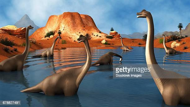 Brachiosaurus dinosaurs grazing in a prehistoric lake.