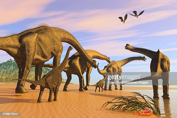 A Brachiosaurus herd walks down a wet sandy beach in search of vegetation to eat.