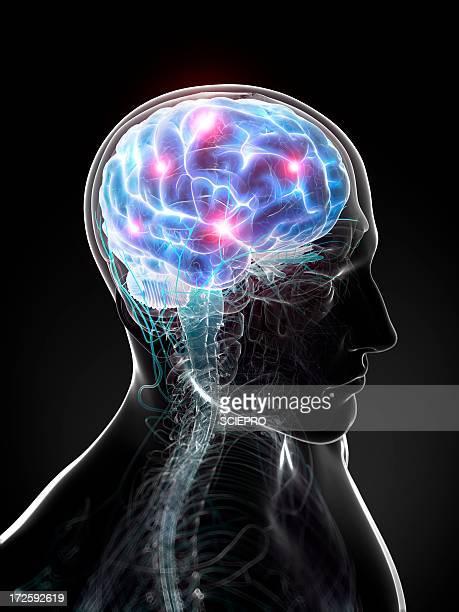 brain activity, artwork - eeg stock illustrations