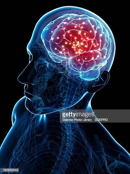 brain activity, conceptual artwork - eeg stock illustrations